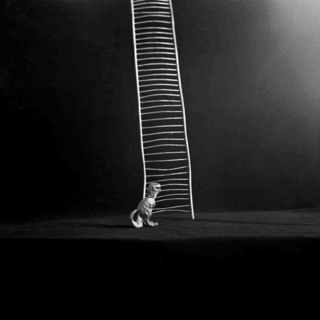 draakje met ladder.jpg