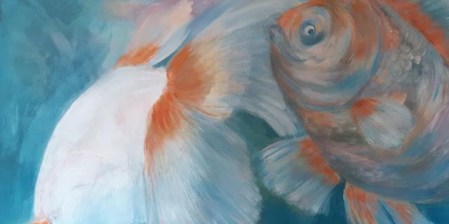 Vissen.jpg