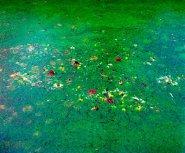 Een ode aan Monet
