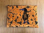 Laptophoes met Jan van Gent