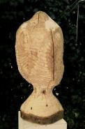 kropper duif